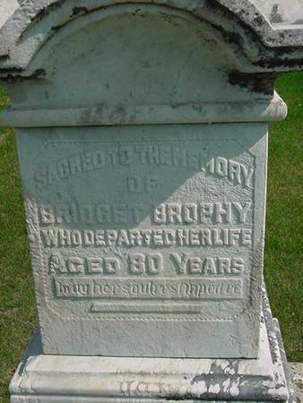 BROPHY, BRIDGET - Scott County, Iowa   BRIDGET BROPHY