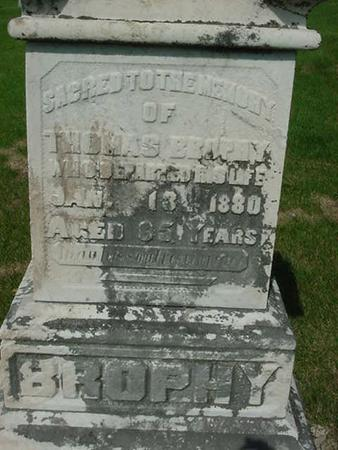 BROPHY, THOMAS - Scott County, Iowa | THOMAS BROPHY