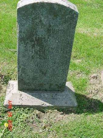 BUCHMYER, JOHN B - Scott County, Iowa   JOHN B BUCHMYER
