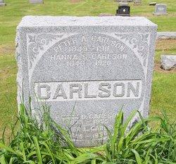 CARLSON, PETER A. - Scott County, Iowa | PETER A. CARLSON