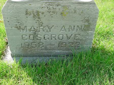 COSGROVE, MARY ANN - Scott County, Iowa | MARY ANN COSGROVE
