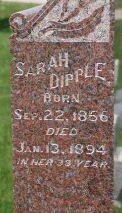 DIPPLE, SARAH - Scott County, Iowa | SARAH DIPPLE