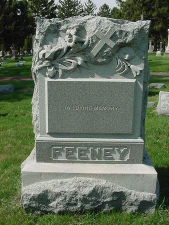 FEENEY, FAMILY STONE - Scott County, Iowa | FAMILY STONE FEENEY