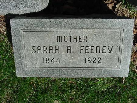 FEENEY, SARAH A - Scott County, Iowa | SARAH A FEENEY