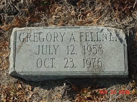 FELLNER, GREGORY A - Scott County, Iowa | GREGORY A FELLNER