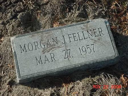 FELLNER, MORGAN J - Scott County, Iowa   MORGAN J FELLNER
