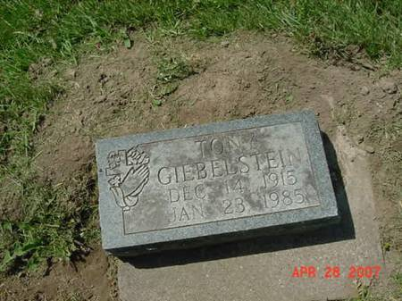 GIEBELSTEIN, TONY - Scott County, Iowa | TONY GIEBELSTEIN