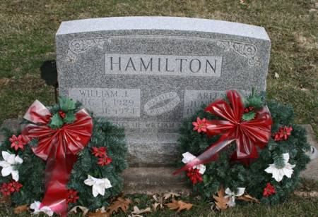 HAMILTON, ARLENE J. - Scott County, Iowa   ARLENE J. HAMILTON