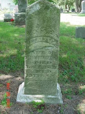 HOFFBAUER, THERESE M - Scott County, Iowa | THERESE M HOFFBAUER