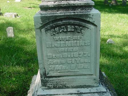 JENKINS, MARY - Scott County, Iowa | MARY JENKINS