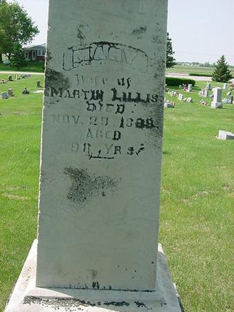 LILLIS, MARY - Scott County, Iowa | MARY LILLIS
