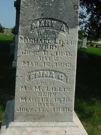 LILLIS, MARY A - Scott County, Iowa | MARY A LILLIS