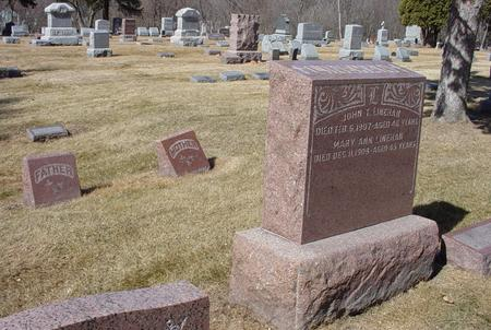 LINEHAN, MARY ANN - Scott County, Iowa | MARY ANN LINEHAN