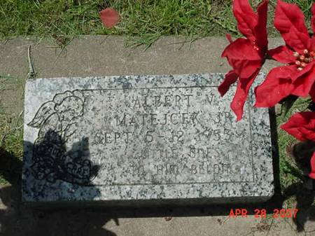 MATEJCEK, ALBERT V JR - Scott County, Iowa   ALBERT V JR MATEJCEK