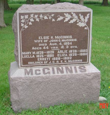 MCGINNIS, MARY M. - Scott County, Iowa | MARY M. MCGINNIS