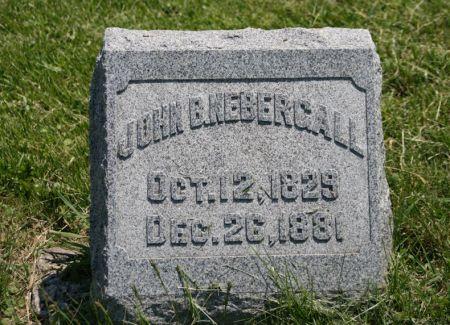 NEBERGALL, JOHN B. - Scott County, Iowa | JOHN B. NEBERGALL