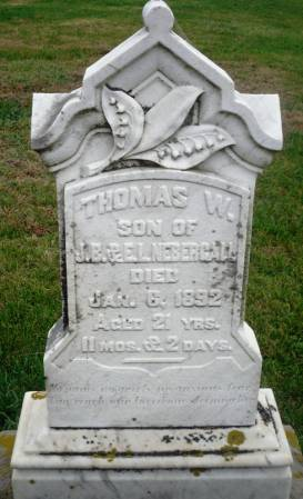 NEBERGALL, THOMAS W. - Scott County, Iowa | THOMAS W. NEBERGALL