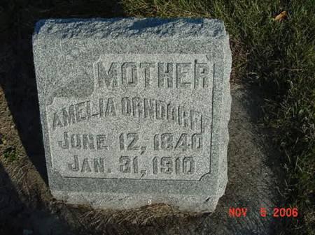 ORNDORFF, AMELIA - Scott County, Iowa   AMELIA ORNDORFF