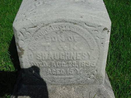 O'SHAUGHNESSY, JOHN - Scott County, Iowa | JOHN O'SHAUGHNESSY