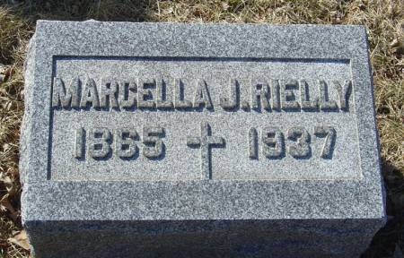 RIELLY, MARCELLA J. - Scott County, Iowa | MARCELLA J. RIELLY