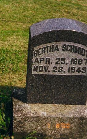 SCHMIDT, BERTHA - Scott County, Iowa | BERTHA SCHMIDT