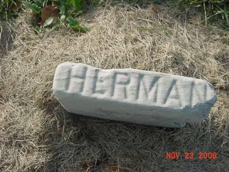SCHNACKLOTH, HERMAN - Scott County, Iowa | HERMAN SCHNACKLOTH