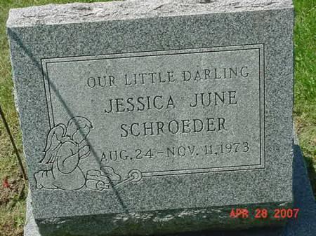 SCHROEDER, JESSICA JUNE - Scott County, Iowa   JESSICA JUNE SCHROEDER