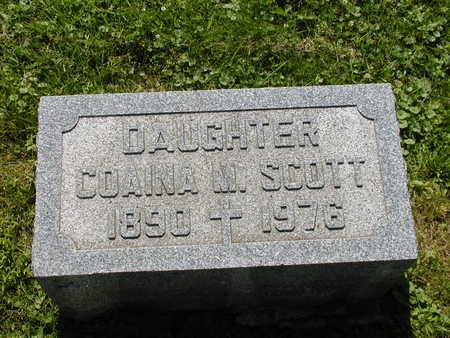 SCOTT, COAINA MARIE - Scott County, Iowa | COAINA MARIE SCOTT