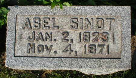 SINDT, ABEL - Scott County, Iowa | ABEL SINDT