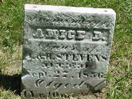STEVENS, ANICE D - Scott County, Iowa | ANICE D STEVENS