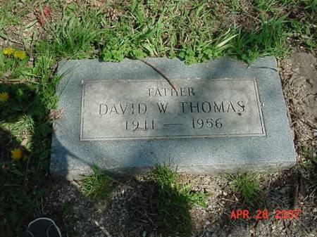 THOMAS, DAVID W - Scott County, Iowa   DAVID W THOMAS