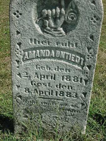 UNTIEDT, AMANDA - Scott County, Iowa | AMANDA UNTIEDT