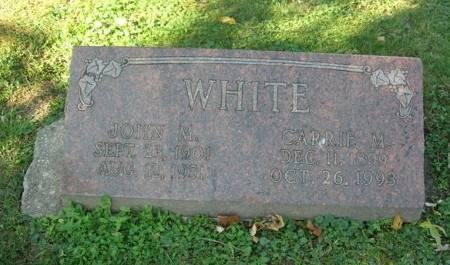 WHITE, CARRIE M. - Scott County, Iowa | CARRIE M. WHITE