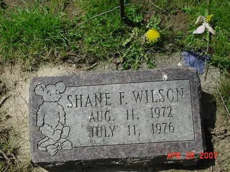 WILSON, SHANE F - Scott County, Iowa | SHANE F WILSON