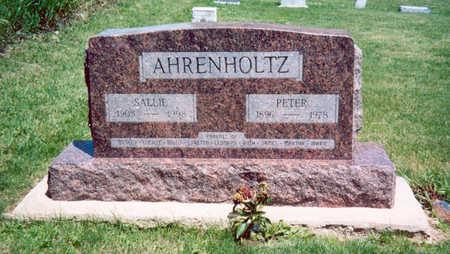 AHRENHOLTZ, PETER - Shelby County, Iowa | PETER AHRENHOLTZ