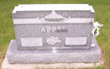 APPEL, ANTHONY JOHN - Shelby County, Iowa | ANTHONY JOHN APPEL