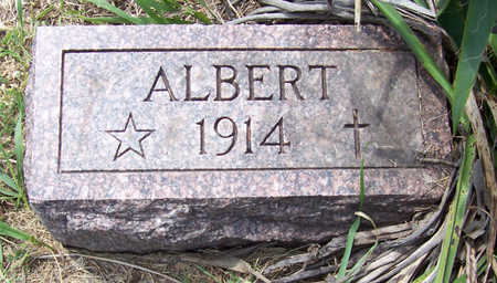 ARKFELD, ALBERT - Shelby County, Iowa | ALBERT ARKFELD
