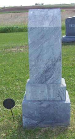 BEAN, NATHANIEL - Shelby County, Iowa | NATHANIEL BEAN