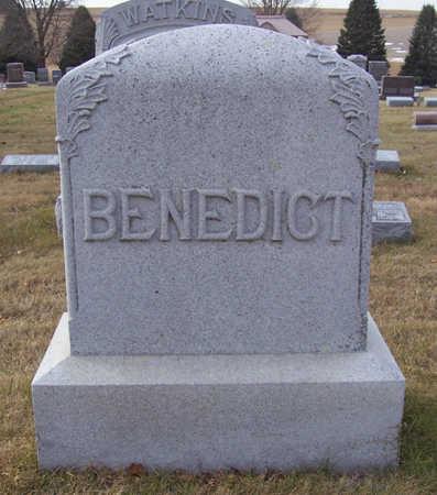 BENEDICT, (LOT) - Shelby County, Iowa   (LOT) BENEDICT