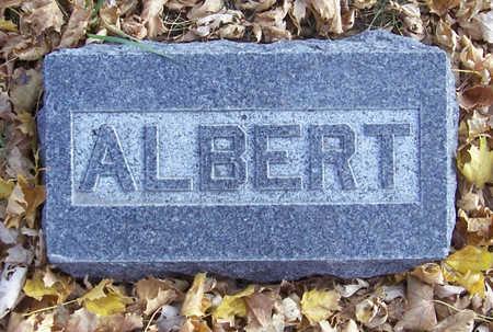 BENHAM, ALBERT - Shelby County, Iowa | ALBERT BENHAM