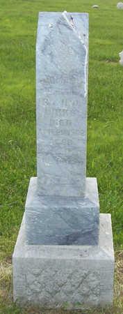 BIRKS, THOMAS E. - Shelby County, Iowa   THOMAS E. BIRKS