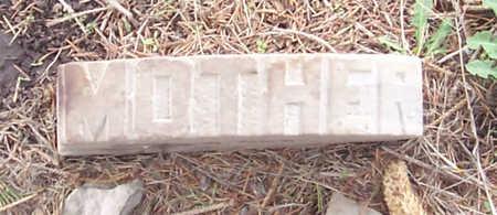 WILLERMOUTH (?WILDERMUTH) BITT, ELLEN - Shelby County, Iowa | ELLEN WILLERMOUTH (?WILDERMUTH) BITT