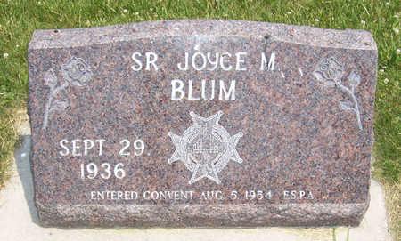 BLUM, SR. JOYCE M. - Shelby County, Iowa | SR. JOYCE M. BLUM