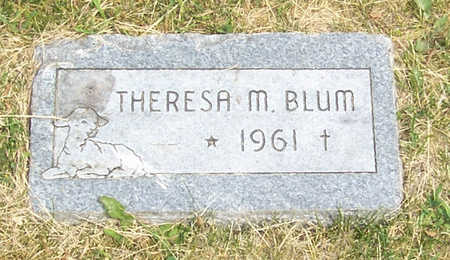BLUM, THERESA M. - Shelby County, Iowa | THERESA M. BLUM