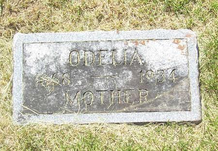BOOK, ODELIA - Shelby County, Iowa | ODELIA BOOK