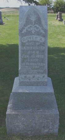 BREWSTER, DOVEY A. - Shelby County, Iowa   DOVEY A. BREWSTER