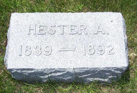 BUCKLEY, HESTER A. - Shelby County, Iowa | HESTER A. BUCKLEY