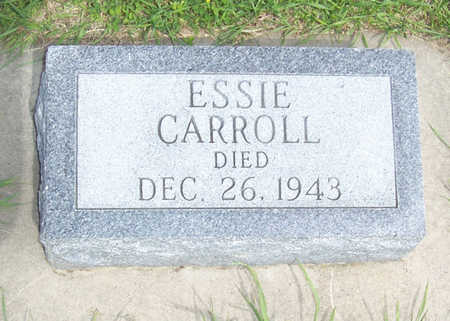 CARROLL, ESSIE - Shelby County, Iowa | ESSIE CARROLL