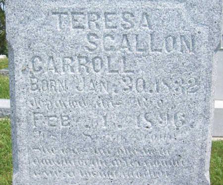 SCALLON CARROLL, TERESA (UP CLOSE) - Shelby County, Iowa | TERESA (UP CLOSE) SCALLON CARROLL