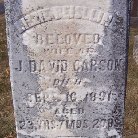 CARSON, LIZZIE BEISLLINE (CLOSE-UP) - Shelby County, Iowa | LIZZIE BEISLLINE (CLOSE-UP) CARSON